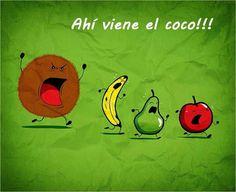 No, no, no el coco no! El coco no! Spanish Puns, Funny Spanish Memes, Frases Humor, Funny Images, Funny Pictures, Funny Pics, Funny Cute, Hilarious, Humor Mexicano