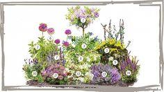 Garden Of Eden, Balcony Garden, Flower Garden Plans, Garden Planning, Decoration, Floral Wreath, Wreaths, Landscape, Nature