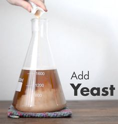 In just 60 seconds, learn how to make a yeast starter for homebrew.