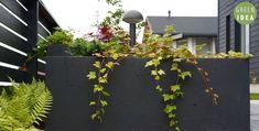 Pihasuunnittelu | GREEN IDEA | Oulu, Helsinki, Rovaniemi, Turku, Tampere, Kuopio Helsinki, Green, Plants, Planters, Plant, Planting