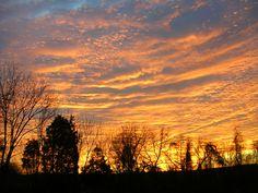 midwinter sky