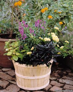 Bushel baskets from the garden center make charming and inexpensive containers f. Bushel baskets from the garden center make charming and inexpensiv Garden Tools, Garden Basket, Plants, Cool Plants, Basket Planters, Outdoor Gardens, Container Gardening, Garden Center, Beautiful Gardens