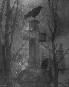 crows on a tombstone in the snow animated gif