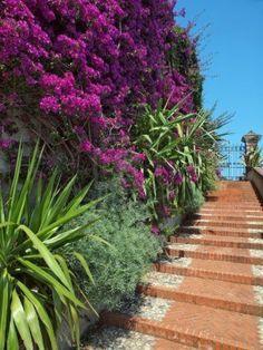 mediterranean garden stairs  Stock Photo