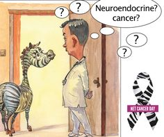 """What is NET cancer? Many physicians are unfamiliar with NET, learn more.  - """"Neuroendocrine tumours (NETs) are rare tumours that develop in cells of the neuroendocrine system. There are a number of different types of neuroendocrine tumour. The type you have depends on the particular cells that are affected."""