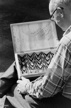 """"""" Carl Mydans—Time & Life Pictures/Getty Images Vladimir Nabokov and collection of butterflies, Ithaca, N. Vladimir Nabokov, Queen Of Sweden, Russian Literature, Butterfly Photos, Insect Art, Book Writer, Life Pictures, Urban Photography, Vintage Photographs"""