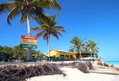 Our list of the best Anguilla beach bars will provide you with plenty of island locations where you can just relax and sip from a coconut! Travel Sights, Secluded Beach, Beach Bars, Just Relax, Small Island, Rum, Caribbean, Beautiful Places