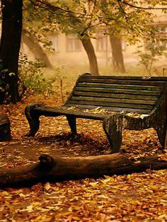 Banco solitário vazio. Resistindo as intempéries do tempo. Que o consome lentamente. Talvez guardando o segredar de casais em arrulhos. José Lopes Cabra - Poeta.