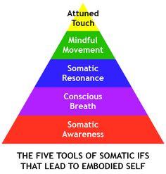 somatic_IFS_triangle