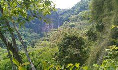 Distant waterfalls