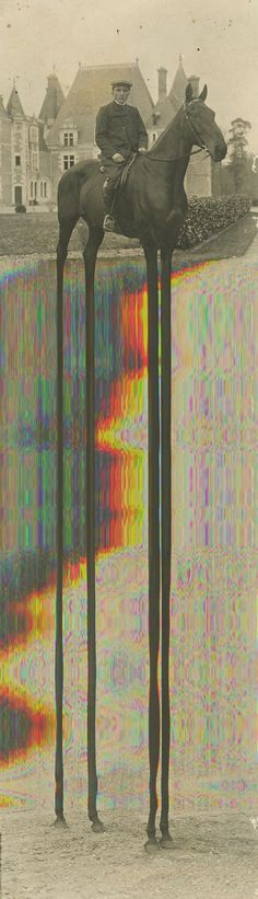 Some experiments with a flatbed scanner with @Helene Potet Potet Chataigner Glitch experimental photography poster
