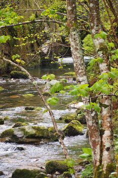 Rio Infierno, #ruta de senderismo, #Asturias