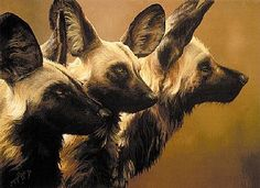 african wild dog sculptures   African wild dogs - African wild dogs by Susan Jane Lees