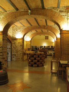 Enoteca Falorni (Greve in Chianti, Italy): Cellar-style wine/cheese/meat tasting at wine enoteca