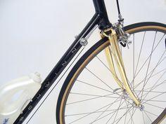 Super shiny Paramount bike