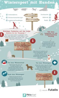Welche Wintersportarten sind auch für Hunde geeignet und was ist beim Wintersport mit Hund zu beachten? Wir beantworten diese Fragen in unserem Blog und fassen für Euch nützliche Tipps in einer Infografik zusammen: http://futalis.de/blog/wintersport-mit-hund/ #infografik #hund #wintersport #Schneeschuhwandern #dog