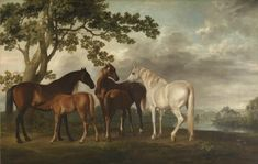 'Mares and Foals in a River Landscape', George Stubbs, c.1763-8 on display at Tate Britain. This painting seems to have been used as an 'overdoor', hung with two other pictures by Stubbs above the doors in the dining room of George Brodrick, 3rd Viscount Midleton, MP (1730–65). Reflecting the ornamental use to which this painting was to be put, it seems that Stubbs, the premier animal painter of his day, did not set out to be especially original. The figures of the horses are th
