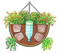DIY Self-Watering Hanging basket