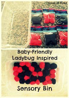 House of Burke: Baby-School: Exploring Ladybugs