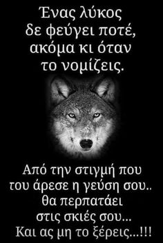 Wolf Quotes, Animal Quotes, Greek Quotes, My Man, Poems, Inspirational Quotes, Thoughts, Love, Motivation