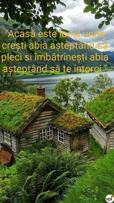 Motto, Horror, Cabin, House Styles, Inspirational, Cabins, Cottage, Wooden Houses, Mottos