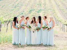 vineyard wedding bac