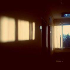 they move on tracks of never-ending light ,  #sunset #light #window and #sundown