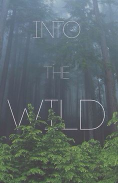 love quote life Cool hippie hipster follow back indie Grunge silence green nature peace forest bohemian wild Woods