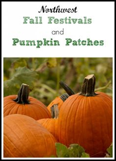 Here is a big list of Pacific Northwest Fall Festivals and pumpkin patches around the Puget Sound area.