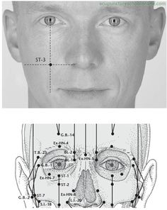 ST-3-Great-Crevice-JULIAO-Acupuncture-Points-1.jpg (494×621)
