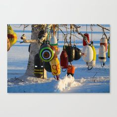 Hanging About Canvas Print by richc Prince Edward Island, Latest Generation, Epson, Feels, Surface, Canvas Prints, Bright, Flat, Printed