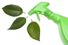 Spring Cleaning the Natural Way | Stretcher.com - Here is a list of some of the things you'll likely be cleaning this spring and what natural products you can use to clean just as effectively as store-bought cleaners. shared by  lassensloves.com