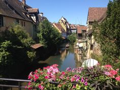 Photo of Little Venice Places Around The World, Around The Worlds, Wonderful Places, Amazing Places, Online Tickets, Alsace, 2 In, Venice, Trip Advisor