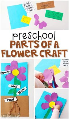 Preschool: Plants It was 50 degrees here in Wisconsin today, which basically means it's time to brea Letter G Activities, Preschool Lesson Plans, Preschool Learning Activities, Preschool Themes, Preschool Crafts, Spring Craft Preschool, Preschool Flower Theme, Indoor Activities, Art Activities For Preschoolers