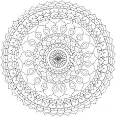 Mandalas to Print and Color | mandala-5-the-mandala-company-the-mandala-company.jpg