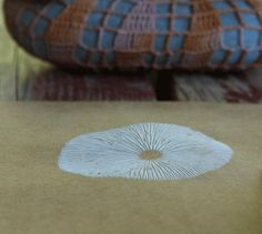 Mushroom spore print sans paint! How bloody cool is that?! Idea by Margie Oomen via bookhou at home.