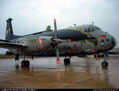 Italy - Navy  MM40124 Breguet 1150 Atlantic by Stefano Monteleone