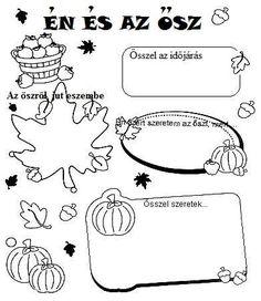 Töltse ki a kért információkkal az őszről!