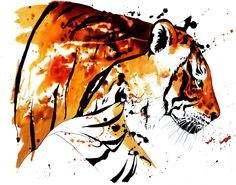 Bengal Tiger by Jane Laurie - done in ink.