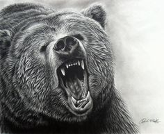 Bear tattoo idea.