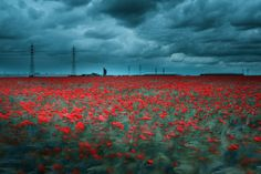 The blood of factories by David Keochkerian