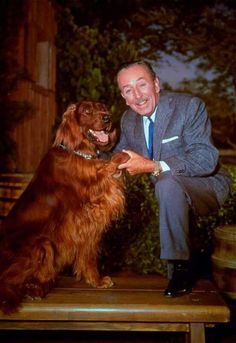 "Walt Disney and Big Red from the 1962 picture film ""Big Red""."