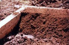 A magaságyat ősszel vagy tavasszal készítjük el. Az őszi építés azért előnyösebb, mert a magvetésig a talaj némileg megülepszik, és tavasszal a lesüllyedt talajt a szükséges...