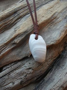 Surfers Scottish Sea Shell Necklace Seaglass by byNaturesDesign, $12.00