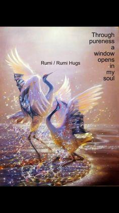 Hafiz, Osho, Rumi Love Quotes, Inspirational Quotes, Shams Tabrizi, Rumi Poem, Jalaluddin Rumi, Family Share, Beautiful Songs