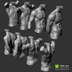 [자료] 인체 사진/자료 - 몸통 : 네이버 블로그