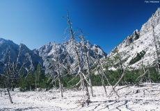 Wimbachgries Nationalpark Berchtesgaden