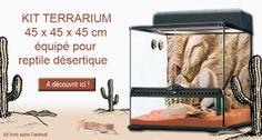 Kit terrarium 45 x 45 x 45 cm, livré tout équipé. Idéal pour les petits #reptiles : #serpents, #grenouilles, #lézards et #geckos. PT2652.  A voir ici : http://www.animaleco.com/catalogue/reptile/terrarium-et-vivarium/kit-terrarium-desert-45x45x45