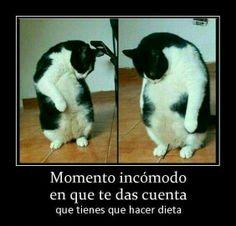Momento  #comico #gracioso