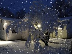 Guess What It's Snowing! http://www.pinterest.com/njestates1/great-pictures/  Thanks to  http://www.njestates.net/real-estate/nj/listings